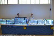 30_Unsere_Meerwasserboerse