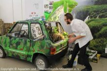 13_Regenwaldauto
