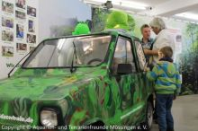 10_Regenwaldauto