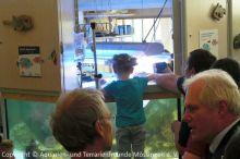Einweihung_Meerwasseraquarium_Kinderklinik_09