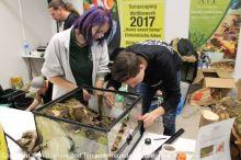 Fisch-und-Reptil-2017_Messe_19