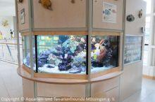 Kinderklinik-Aquarium_Wartungsarbeiten_1