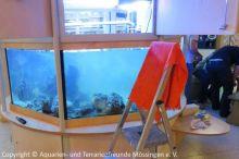 Kinderklinik-Aquarium_Wartungsarbeiten_7