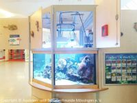 Pflege_Kinderklinik-Aquarium_April2018_00
