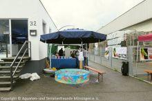 04a_Sommerfest_Korallen-Outlet