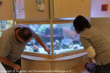 Pflege_Kinderklinik-Aquarium_4