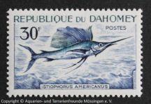 Istiophorus_americanus_DAHOME