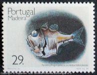Argyropelecus-aculeatus_P