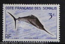 Schwertfisch_SOMALIA